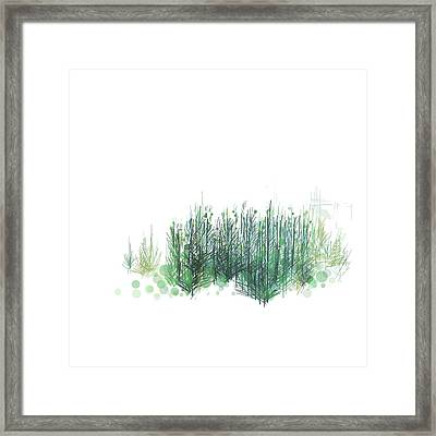 Northwoods Framed Print