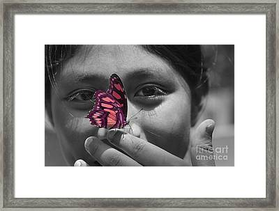 Nosey Framed Print by Katherine Morgan