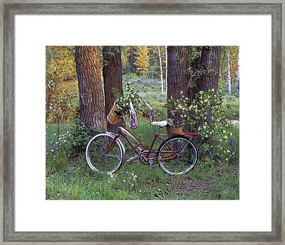 Nostalgia Framed Print by Leland D Howard