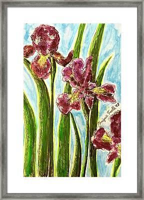 Nostalgic Irises Framed Print