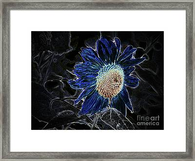 Not A Sunflower Now Framed Print