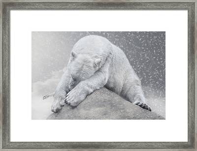 Not Dreaming Of White Christmas Framed Print