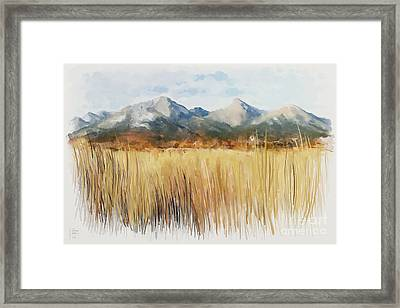 Not Far Away Framed Print by Ivana Westin