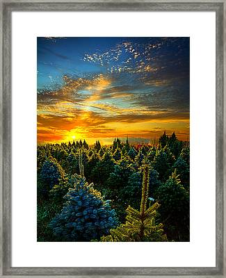 Not Forgotten Framed Print by Phil Koch