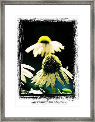 Not Perfect But Beautiful Framed Print by Gerlinde Keating - Galleria GK Keating Associates Inc