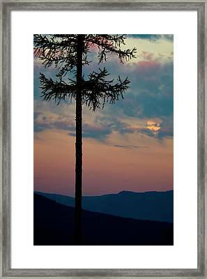 Framed Print featuring the photograph Not Quite Clearcut by Albert Seger
