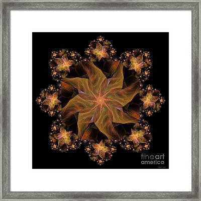 Not So Black Star / Kaleidoscope   Framed Print by Elizabeth McTaggart