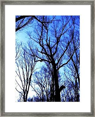 Nothing But Blue Skies Framed Print by Fareeha Khawaja