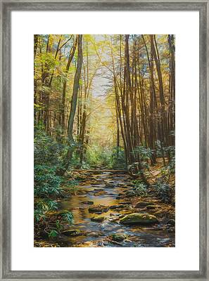 Nothing But Peace Framed Print by Lisa Bell
