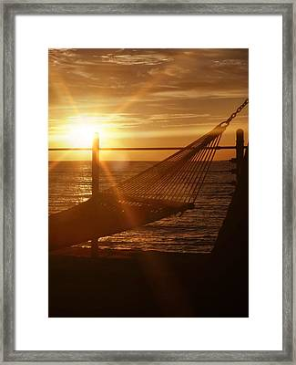Nothing Gold Stays Framed Print by JAMART Photography