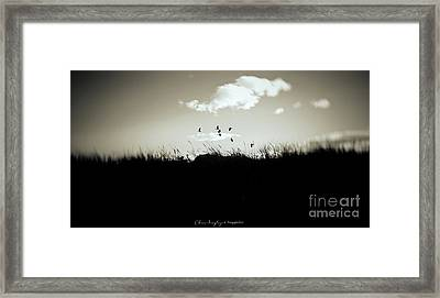 Nothing Lasts Framed Print