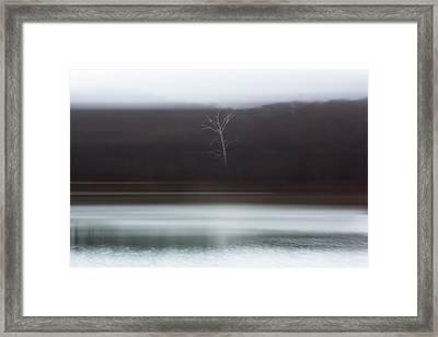 Noticed Framed Print