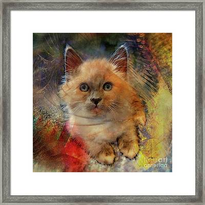 Notorious Rdk - Square Version Framed Print by John Robert Beck