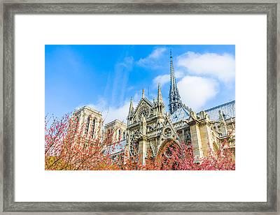 Notre Dame Cathedral In Paris Spring Framed Print