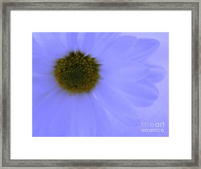 November Blues Framed Print