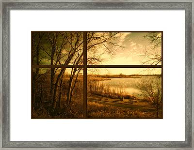 November By The Walking Path Pa Framed Print by Thomas Woolworth