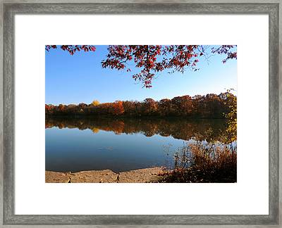 November Colors Framed Print