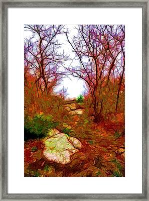 November Fantasy Framed Print by Lilia D