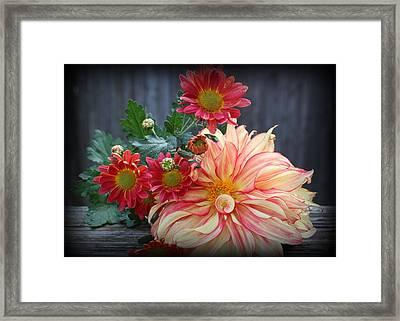 November  Flowers - Still Life Framed Print by Dora Sofia Caputo Photographic Art and Design