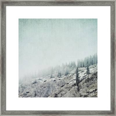 November Fog Framed Print by Priska Wettstein
