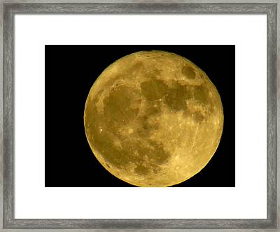 Framed Print featuring the photograph November Full Moon by Eric Switzer