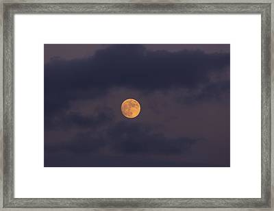November Full Moon With Plane Framed Print by Angela A Stanton