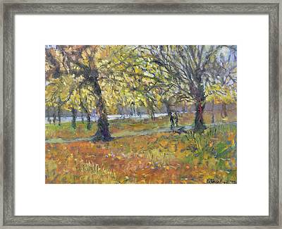 November In Hyde Park Framed Print by Patricia Espir