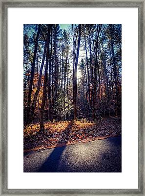 Framed Print featuring the photograph November Light by Kendall McKernon