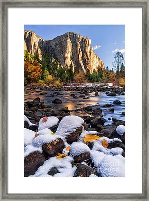 November Morning Framed Print by Anthony Michael Bonafede