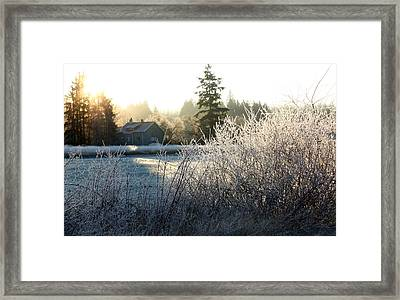 November Morning Framed Print by Barbara  White