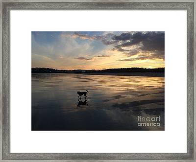 November Sunset Framed Print by Laurie Pocher