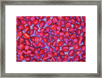 Now Thats A Strawberry Tart Framed Print by Scott Campbell