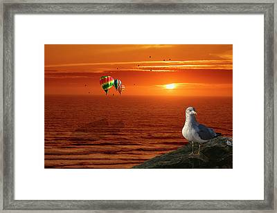 Now Those Are Funny Looking Birds Framed Print