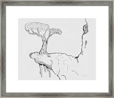 Nowhere Left To Grow Framed Print by Shawn Ballard