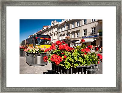 Nowy Swiat Street And Red Geranium Framed Print