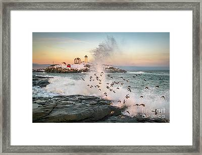 Nubble Wave With Sandpipers Framed Print