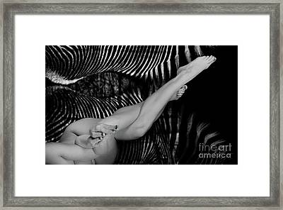 Nude Female Twisting Against Zebra Background - 3017bw Framed Print by Cee Cee - Nude Fine Arts