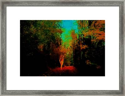 Nude In The Forest Framed Print by Jeff Burgess