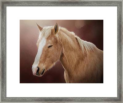 Framed Print featuring the photograph Nugget by Debby Herold
