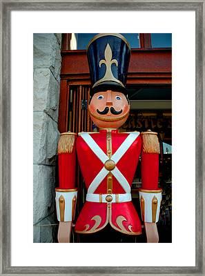 Framed Print featuring the photograph Nutcracker Protector by LeeAnn McLaneGoetz McLaneGoetzStudioLLCcom