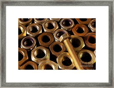 Nuts And Screw Framed Print
