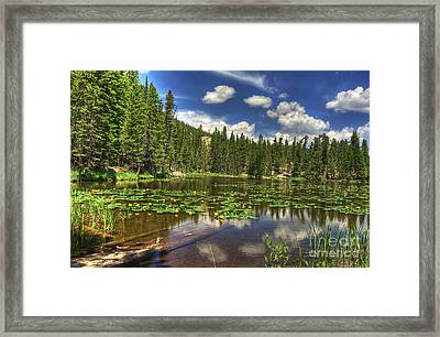 Nymph Lake 2 Framed Print