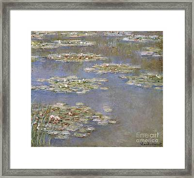 Nympheas Framed Print