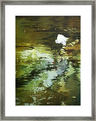 The Morning Mirror Framed Print