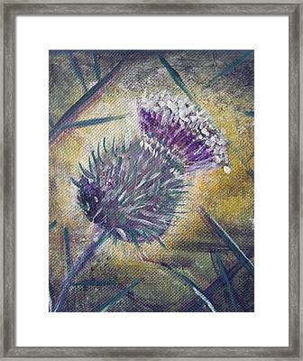 O' Flower Of Scotland Framed Print