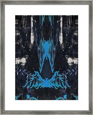 Oa-2638 Framed Print