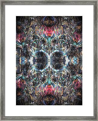 Oa-3988 Framed Print