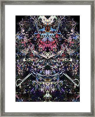 Oa-4003 Framed Print