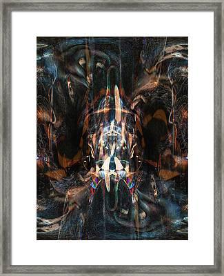 Oa-4073 Framed Print