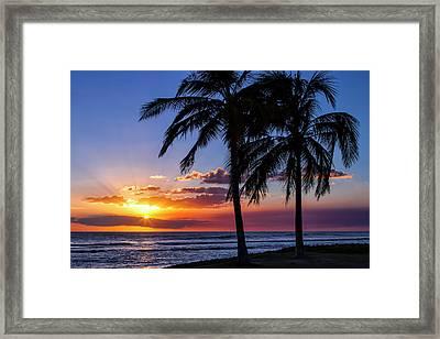 Oahu Palms Framed Print